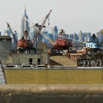 View from Brooklyn Queens Expressway with Bird