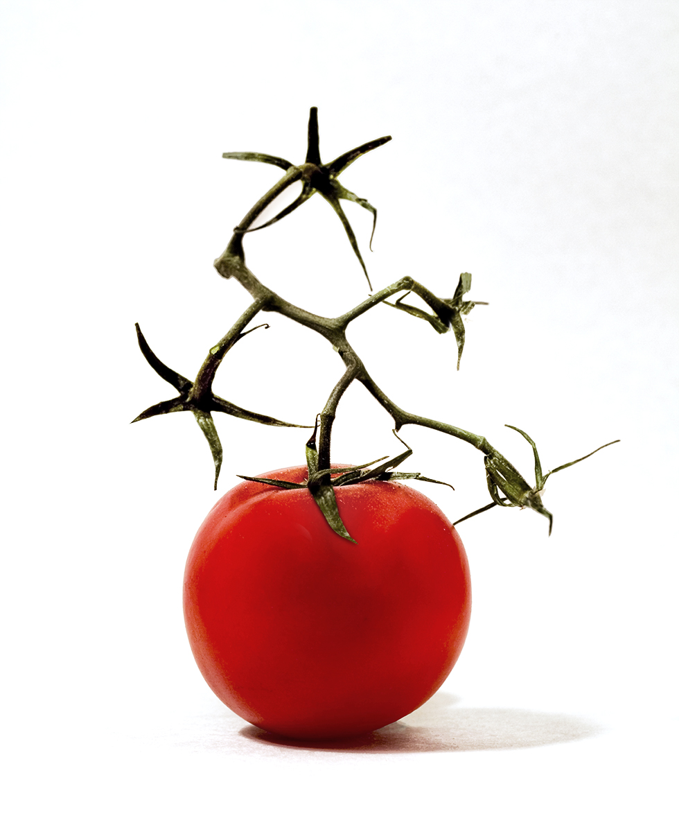Tomato with Vine
